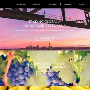 web designed in sri lanka for new zealand client
