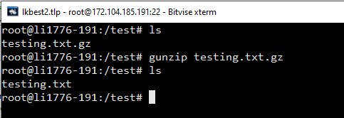 gunzip extract gz file in linux