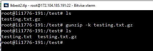 gunzip keep both files linux