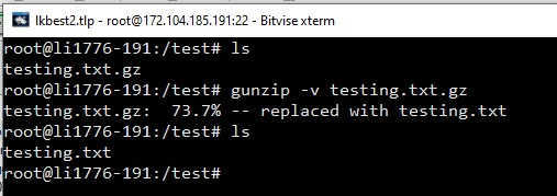 gunzip with verbose extract gz-archive linux