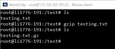 gzip gz a file create gz archive linux